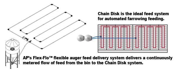 AP Chain Disk 5