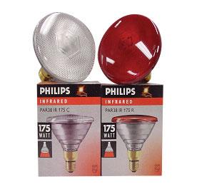 Light Bulbs Philips